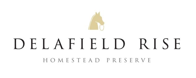 Delafield Rise Quick Logo